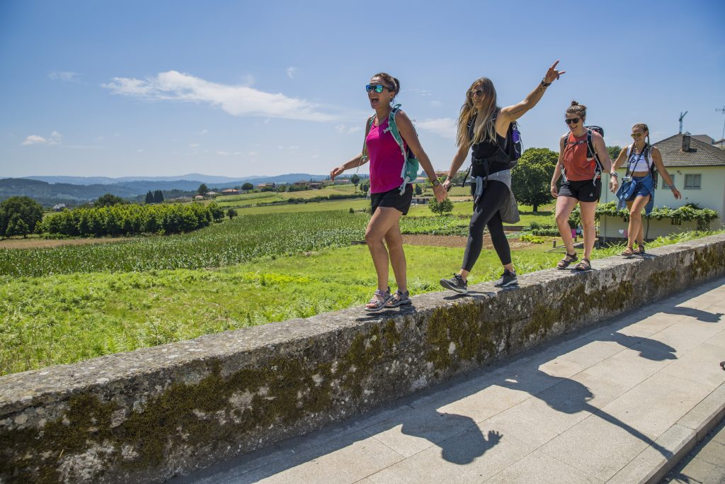Spain El Camino Group