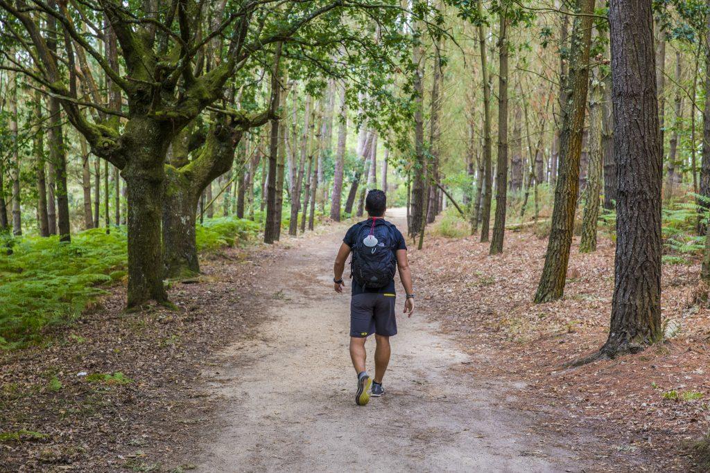 Spain El Camino Trail Traveller